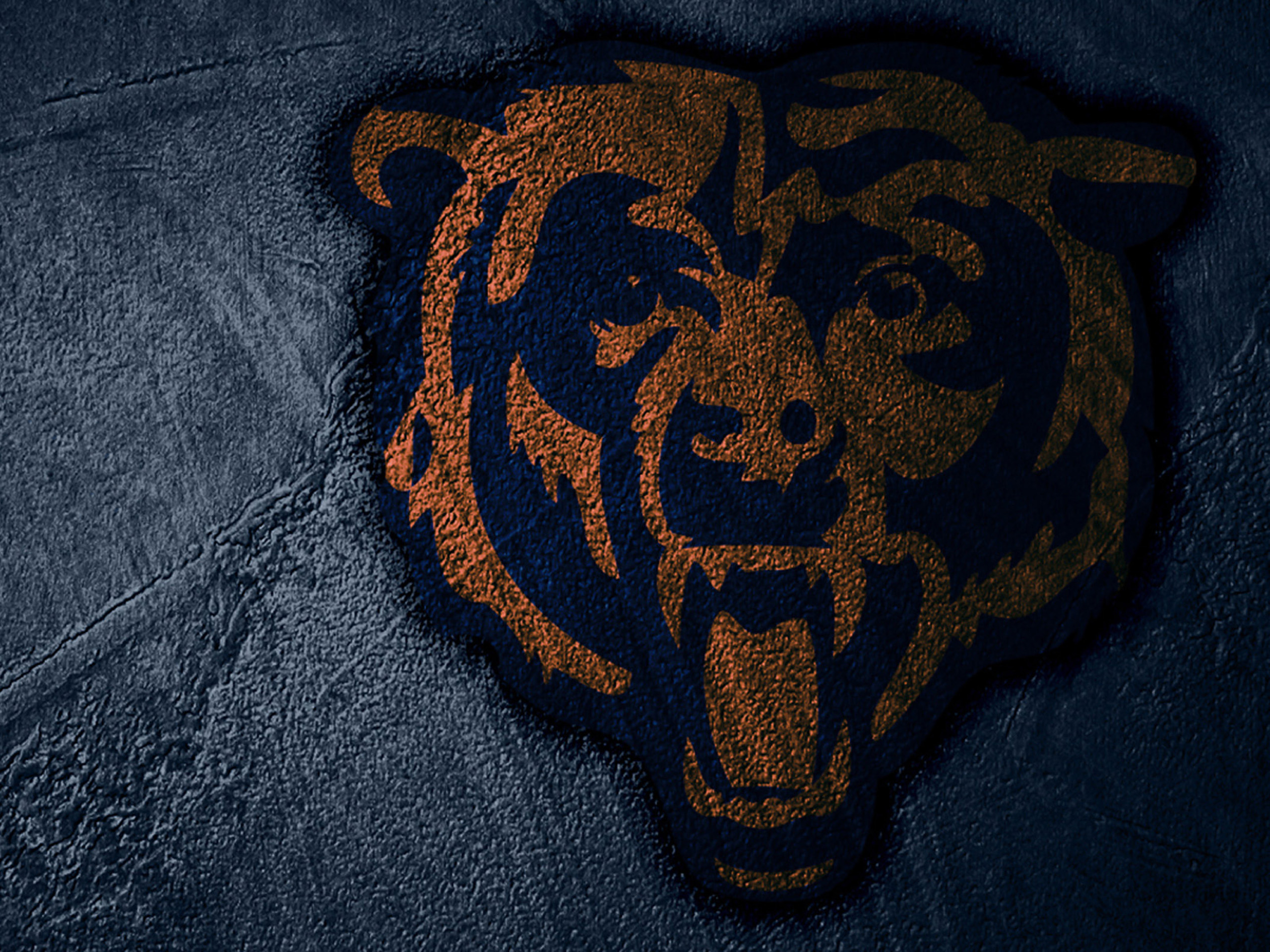 related chicago bears 23976 12 16 2010 chicago bears wallpaper ygytq 2560x1920