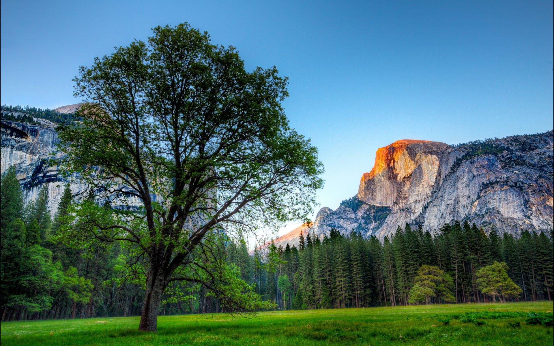 Blog Archive Mac Wallpapers Yosemite Wallpapers for Yosemite Macs 1920x1200