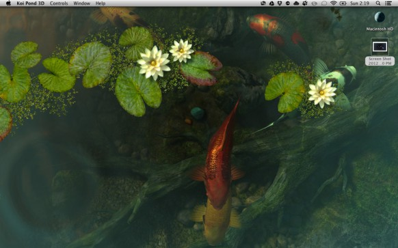 Koi live wallpaper for pc wallpapersafari for Koi pond screensaver