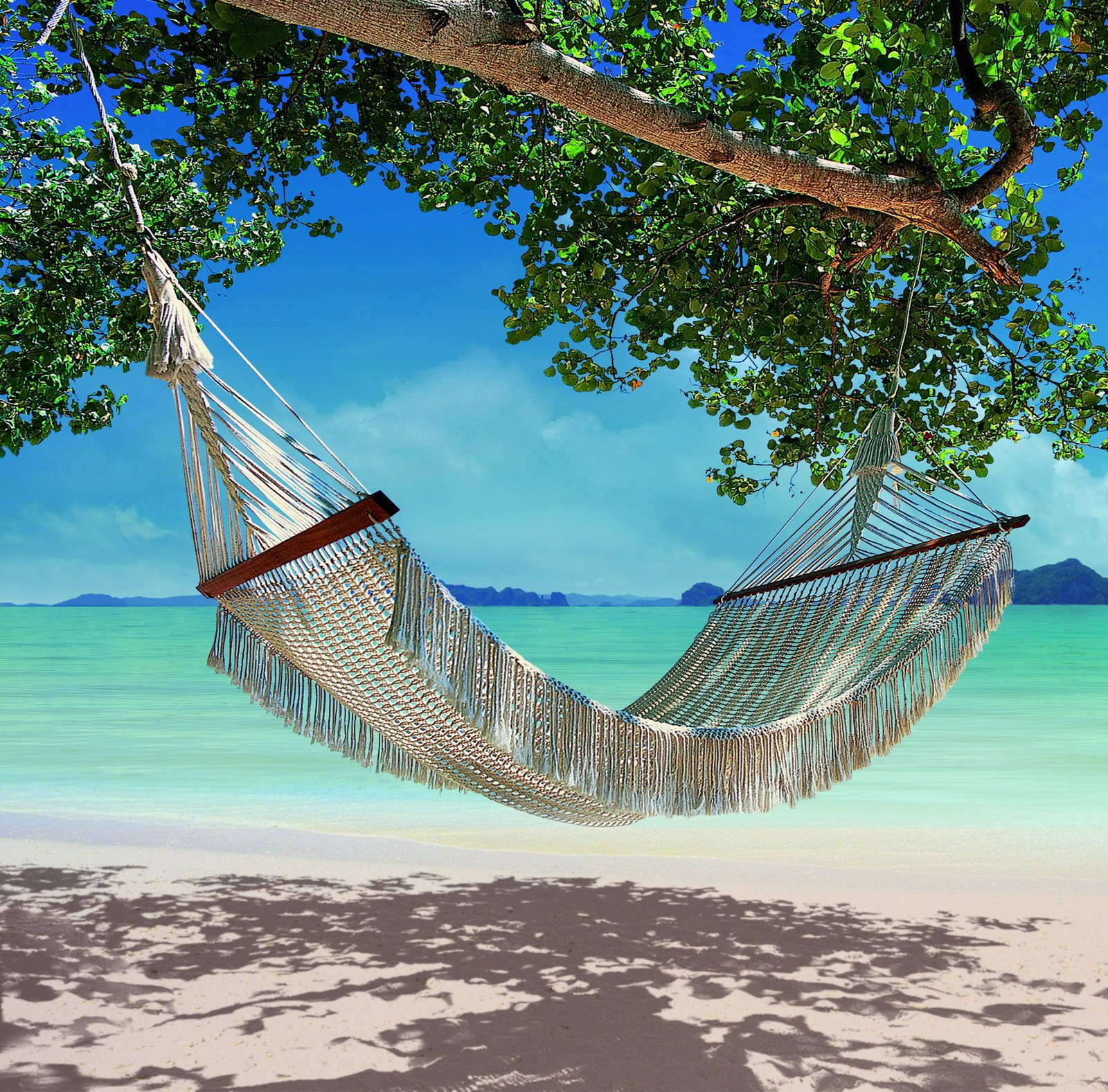 Download Hammock On The Beach Hammock on the beach 1600x1577