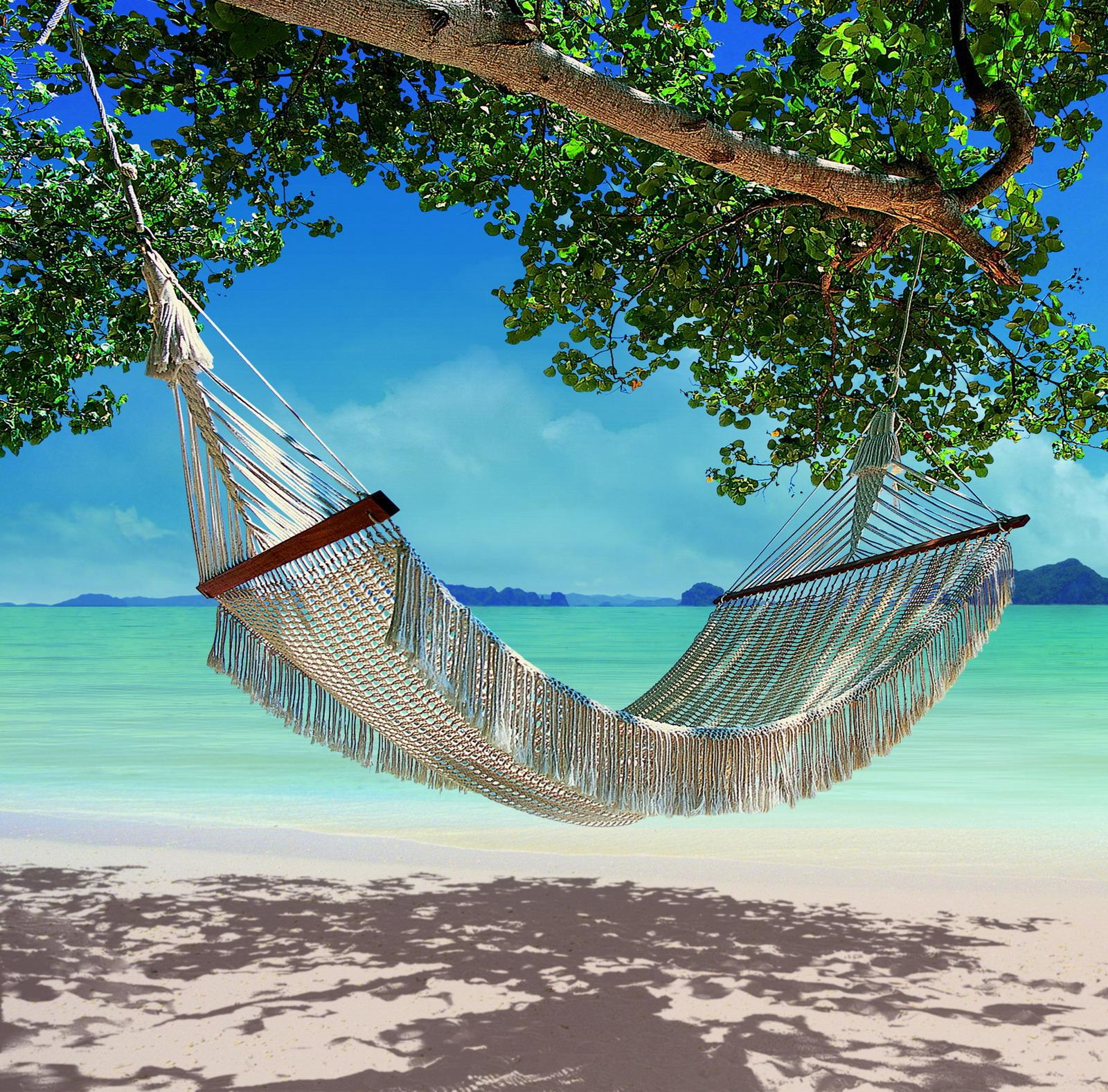 Download Hammock On The Beach Hammock on the beach 1600x1577