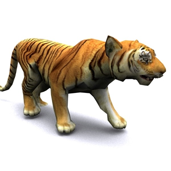 Go Back Gallery For Animated Tiger Pictures 600x600