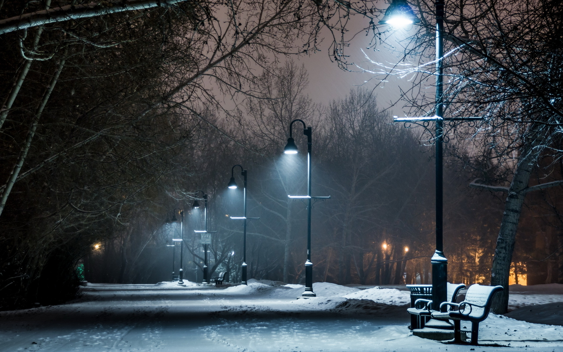 lamp post night path trail wallpaper 1920x1200 46701 WallpaperUP 1920x1200