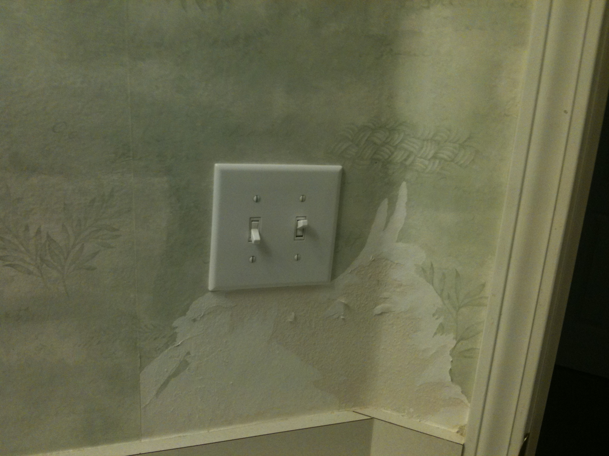 go to Home Depot to rent a steamer to remove the wallpaper 2048x1536