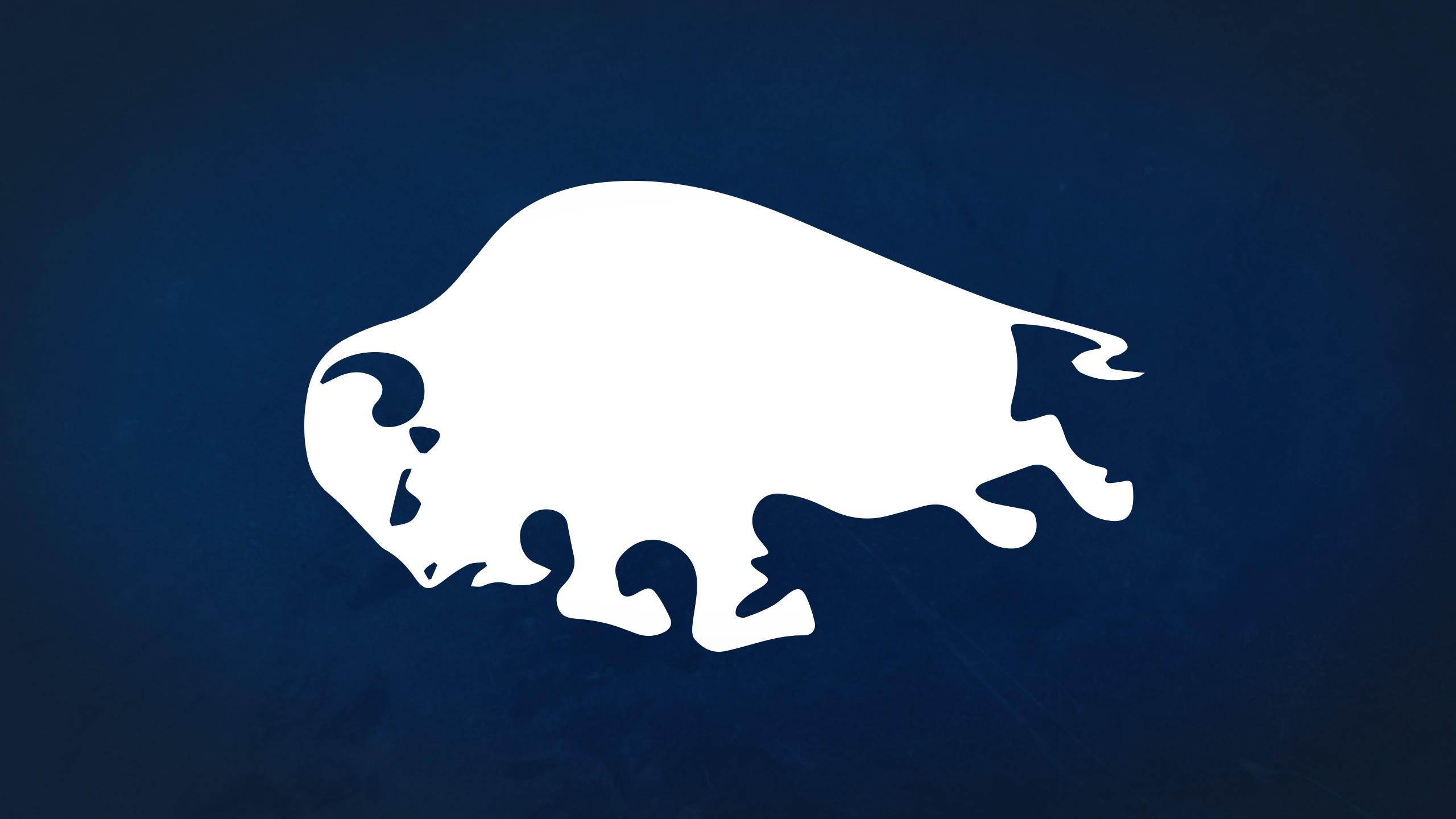 Buffalo Sabres Computer Wallpapers Desktop Backgrounds 2560x1440 2560x1440
