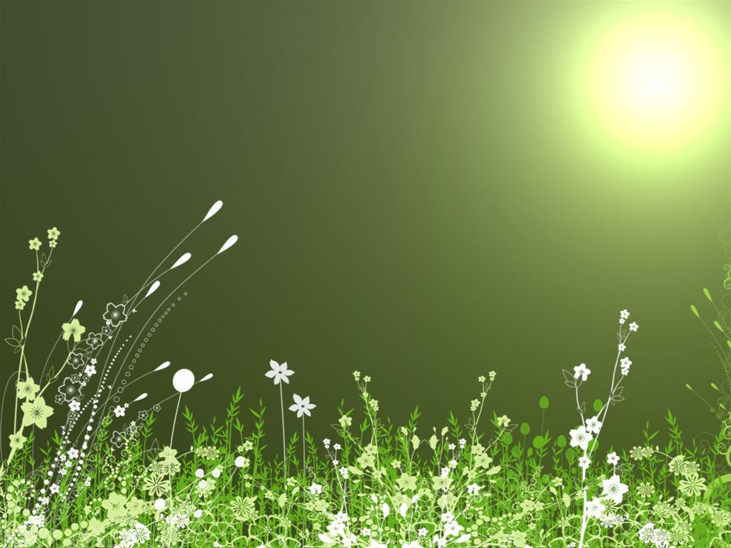 Green images Garden Wallpaper wallpaper photos 3844915 1024x768