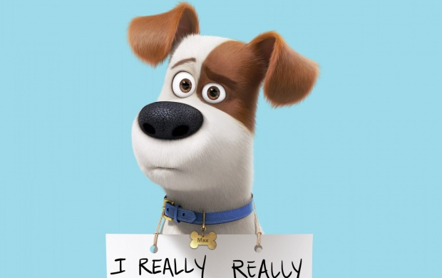Max The Secret Life Of Pets 2016 click to view 620x390