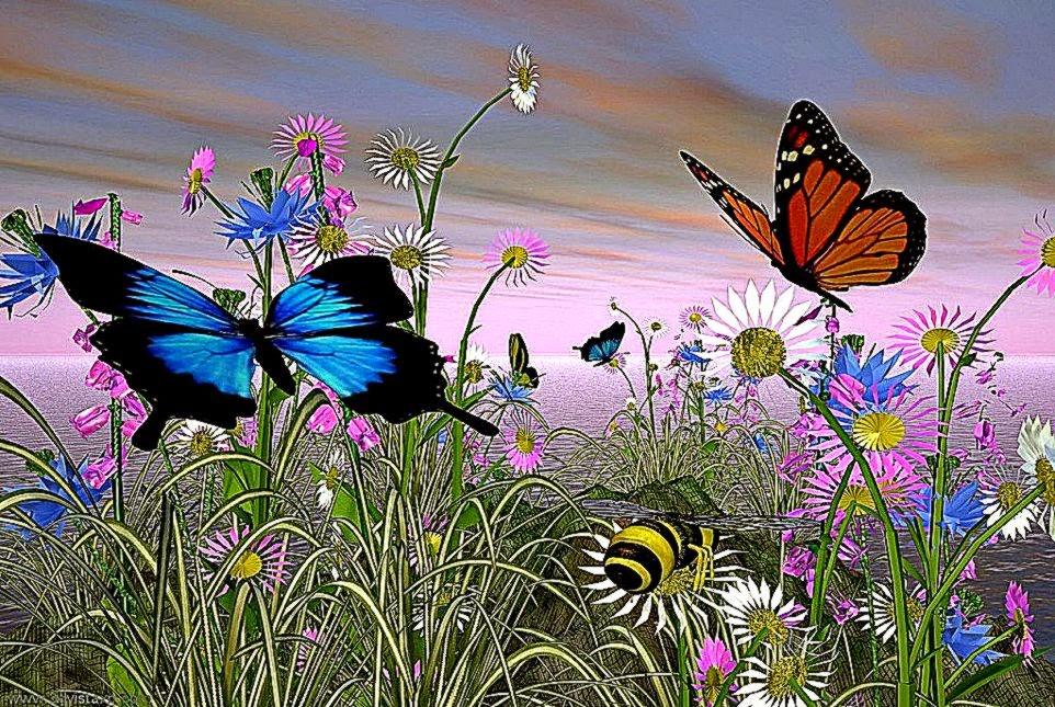 free animated butterflies desktop wallpaper