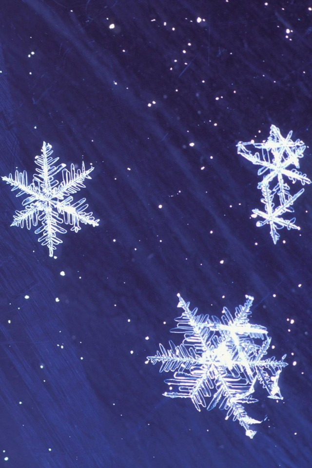 Download Animated Winter Backgrounds 640x960