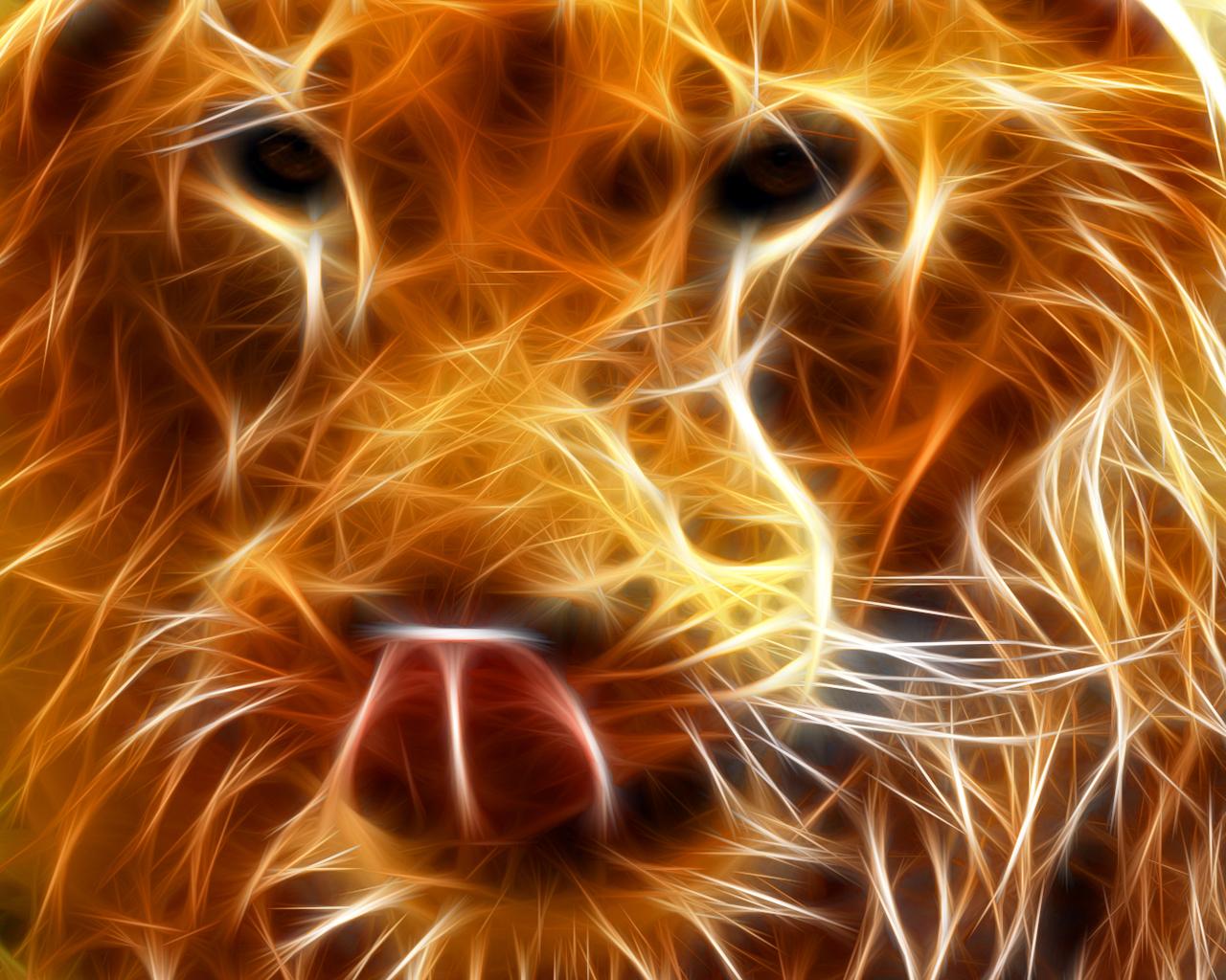 Lion Fire Wallpapers HD wallpapers   Lion Fire Wallpapers 1280x1024