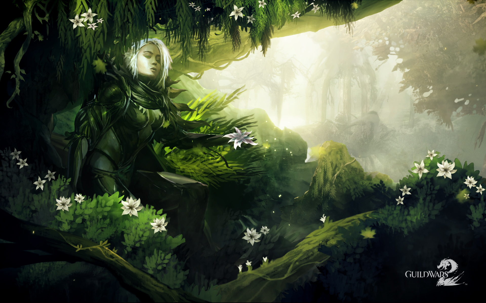 Guild Wars 2 HD Official Wallpapers   MMORPG News   MMOsitecom 1920x1200