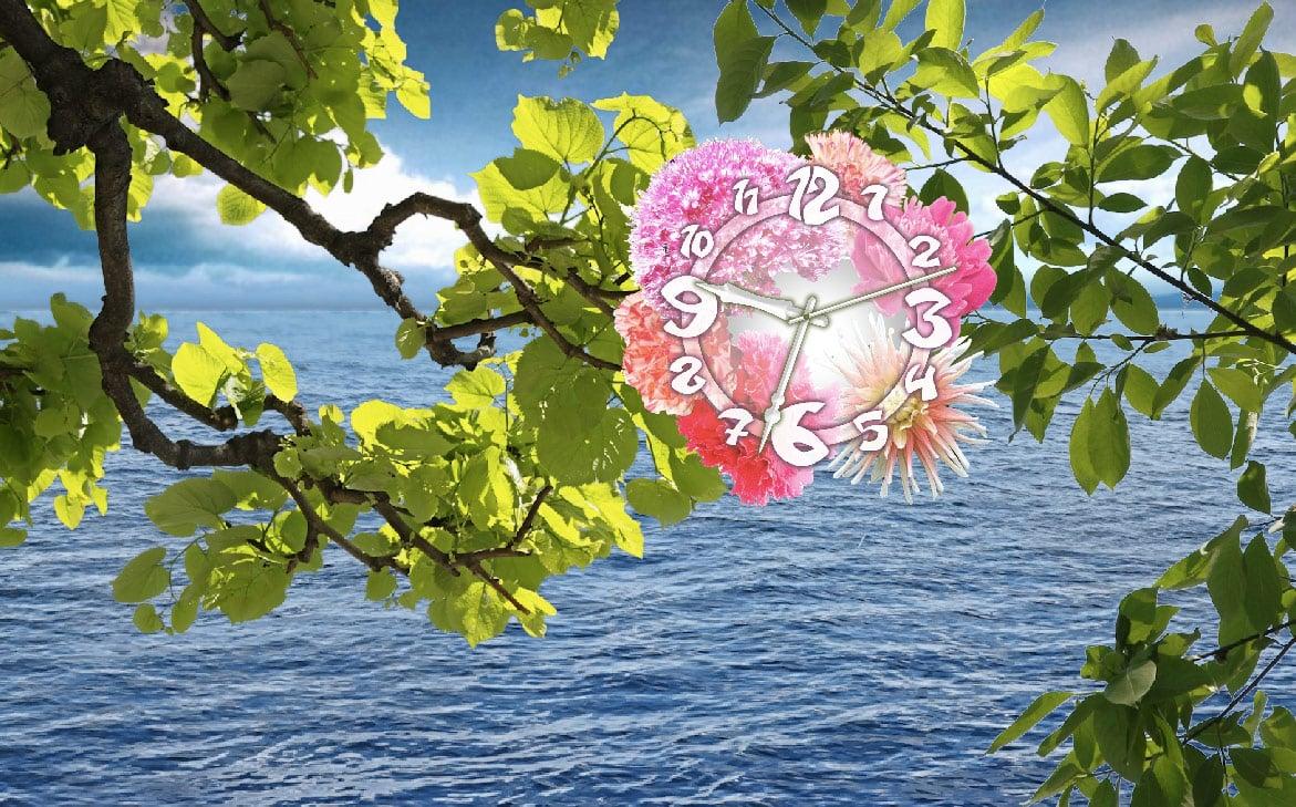 7art Water Flower Clock screensaver   Imagine yourself sitting among 1171x729