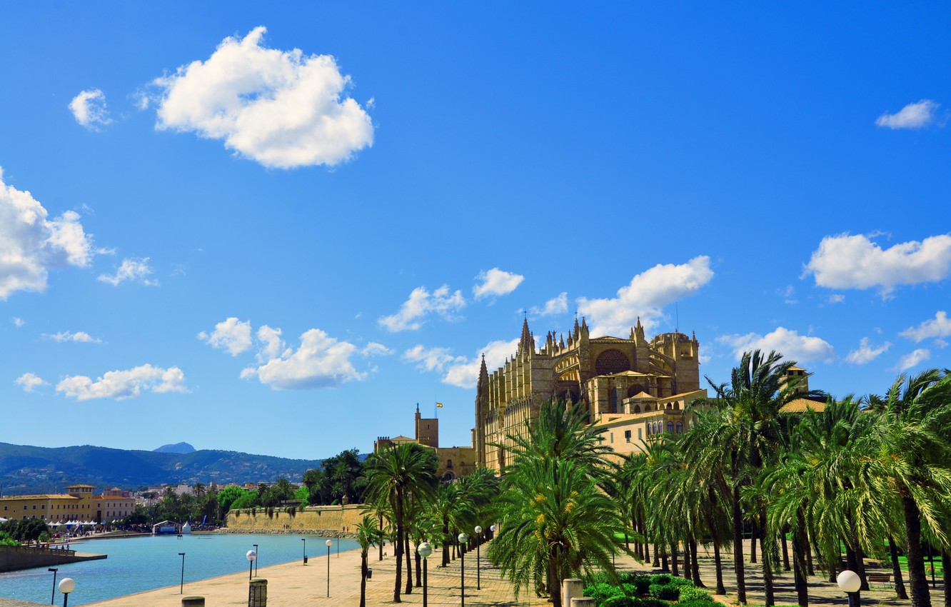 Wallpaper the city the building Cathedral fortress Palma de 1332x850