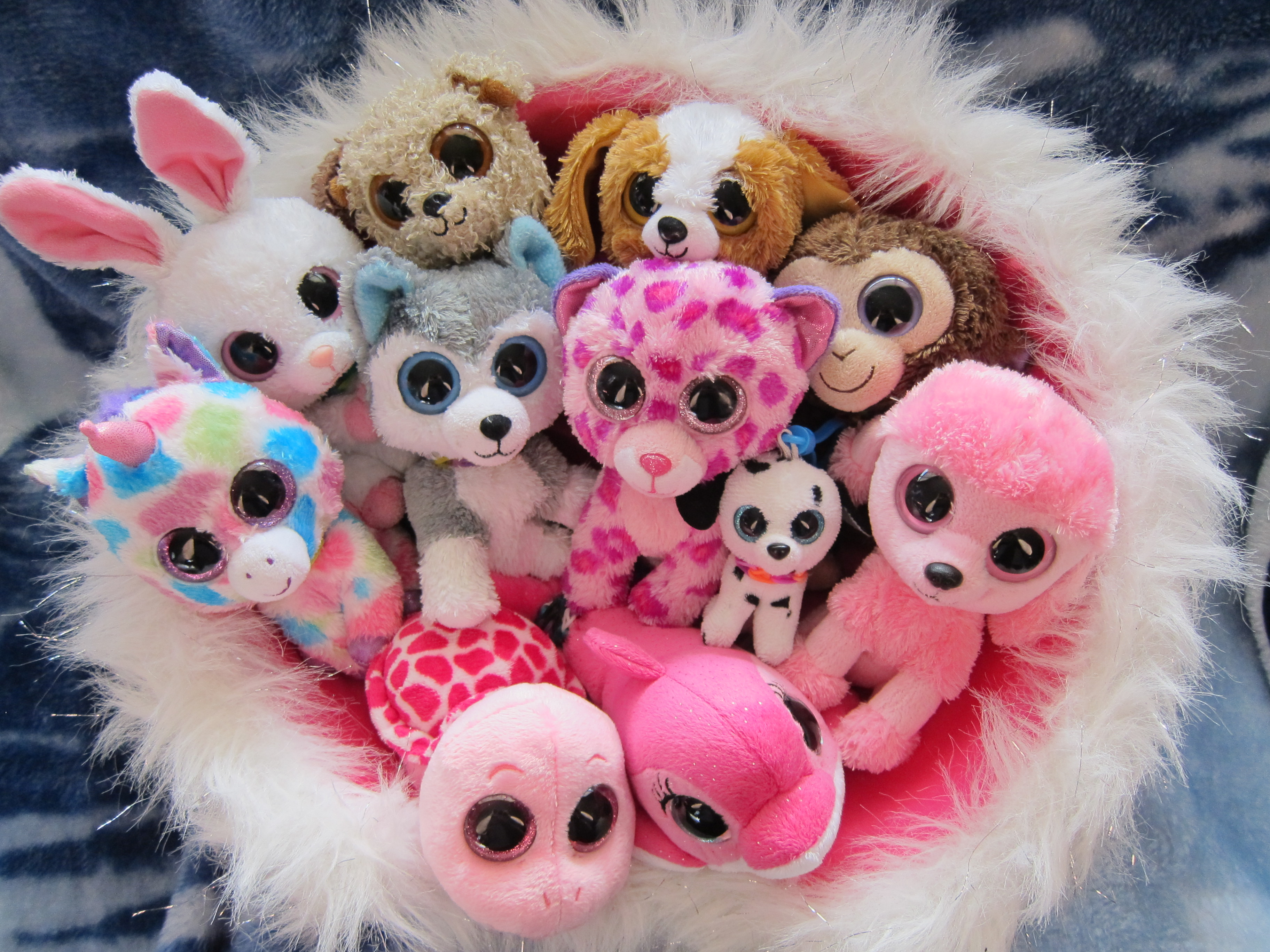 62 Beanie Boos HD Wallpapers Backgrounds 3648x2736
