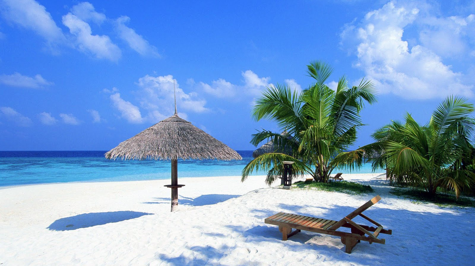 tropical beach Dominican Republic Wallpapers HD 1600x896