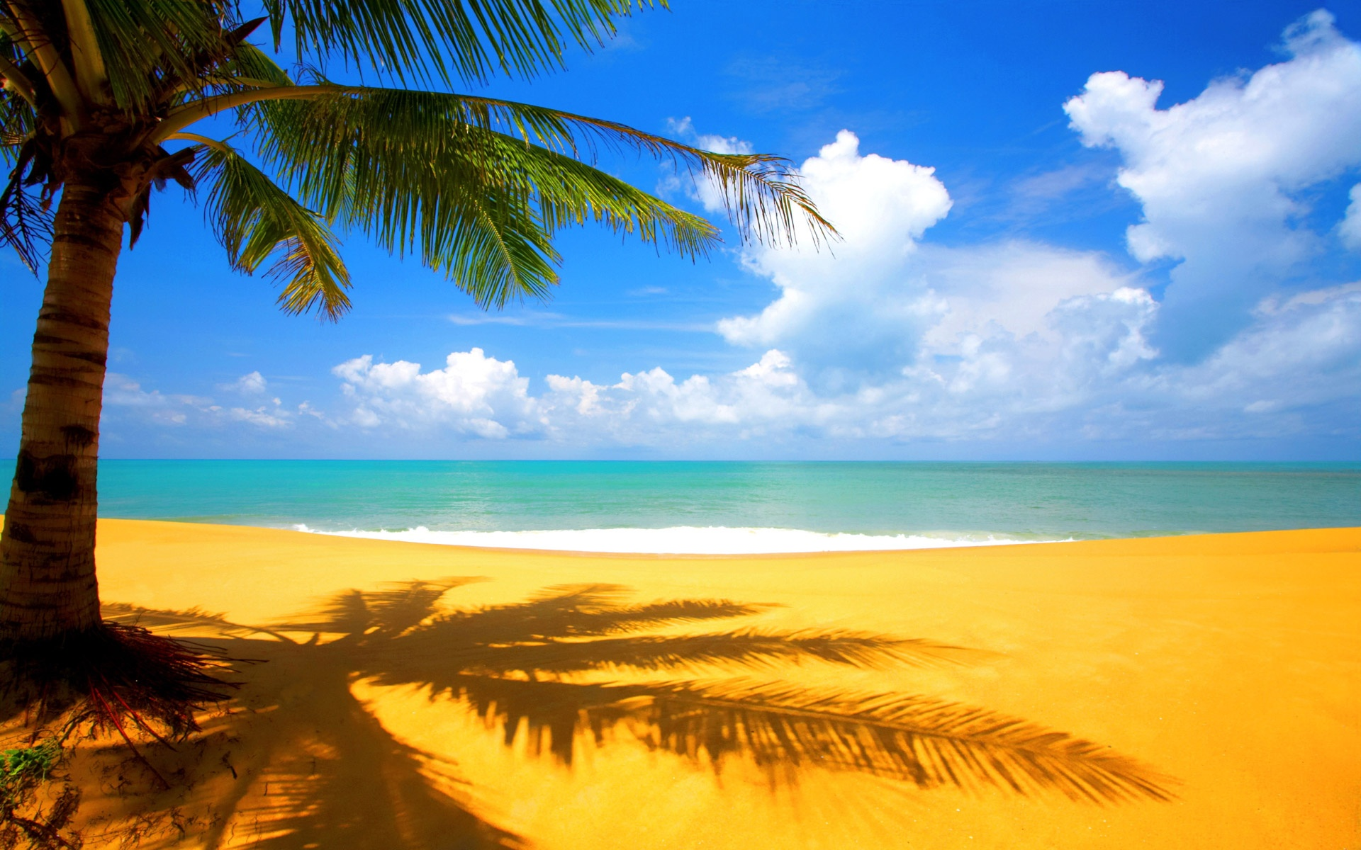 On Golden Sandy Beach 1920x1200 WIDE Wallpaper Sunny Beaches Islands 1920x1200