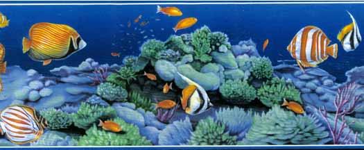 Blue Tropical Fish Wallpaper Border 525x216