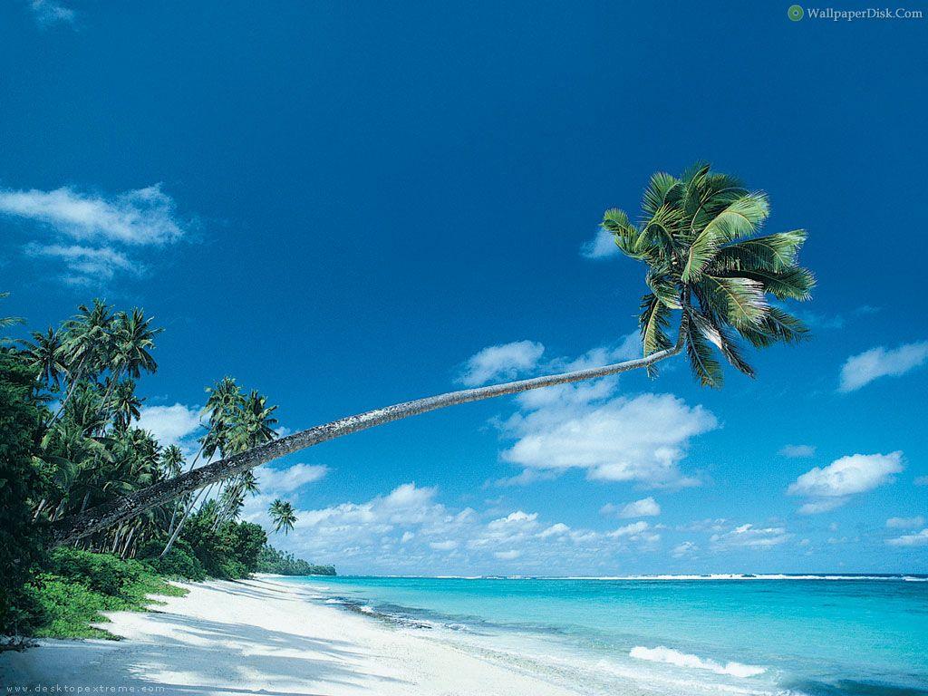 Beautiful Beach Desktop 1024x768