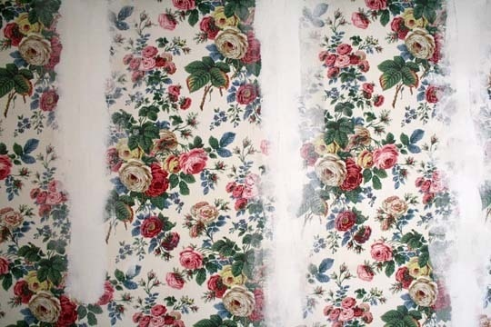 Do you have wallpaper throughout your house you want removed for a 540x360