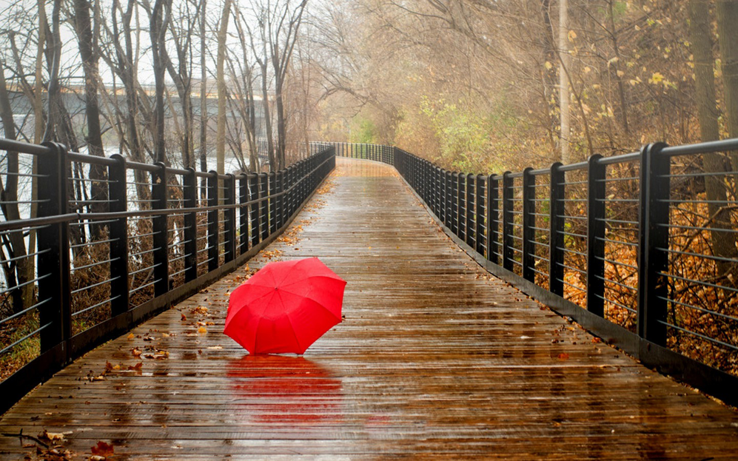 Free download rainy day hd wallpapers 1440x900 for your desktop mobile tablet explore 74 - Rainy hd wallpaper for pc ...