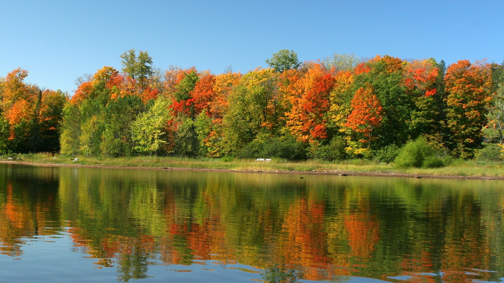 autumn wallpaper scenes water photo 1920x1080 1920x1080