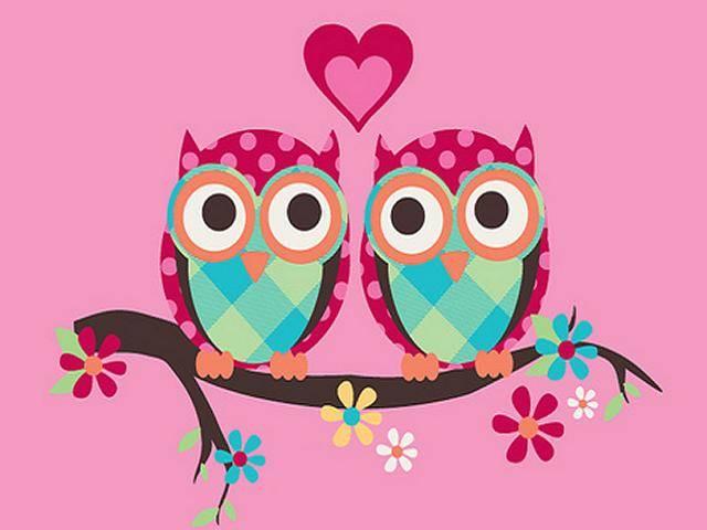 640x480px Cute Owl Wallpaper Hd Wallpapersafari