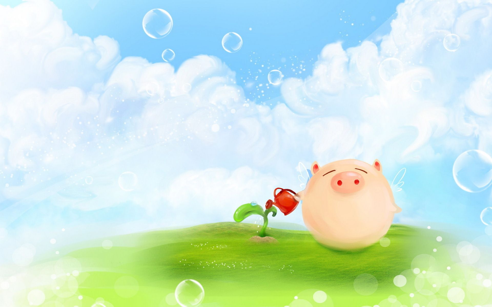 Cute Pig Wallpapers 1920x1200