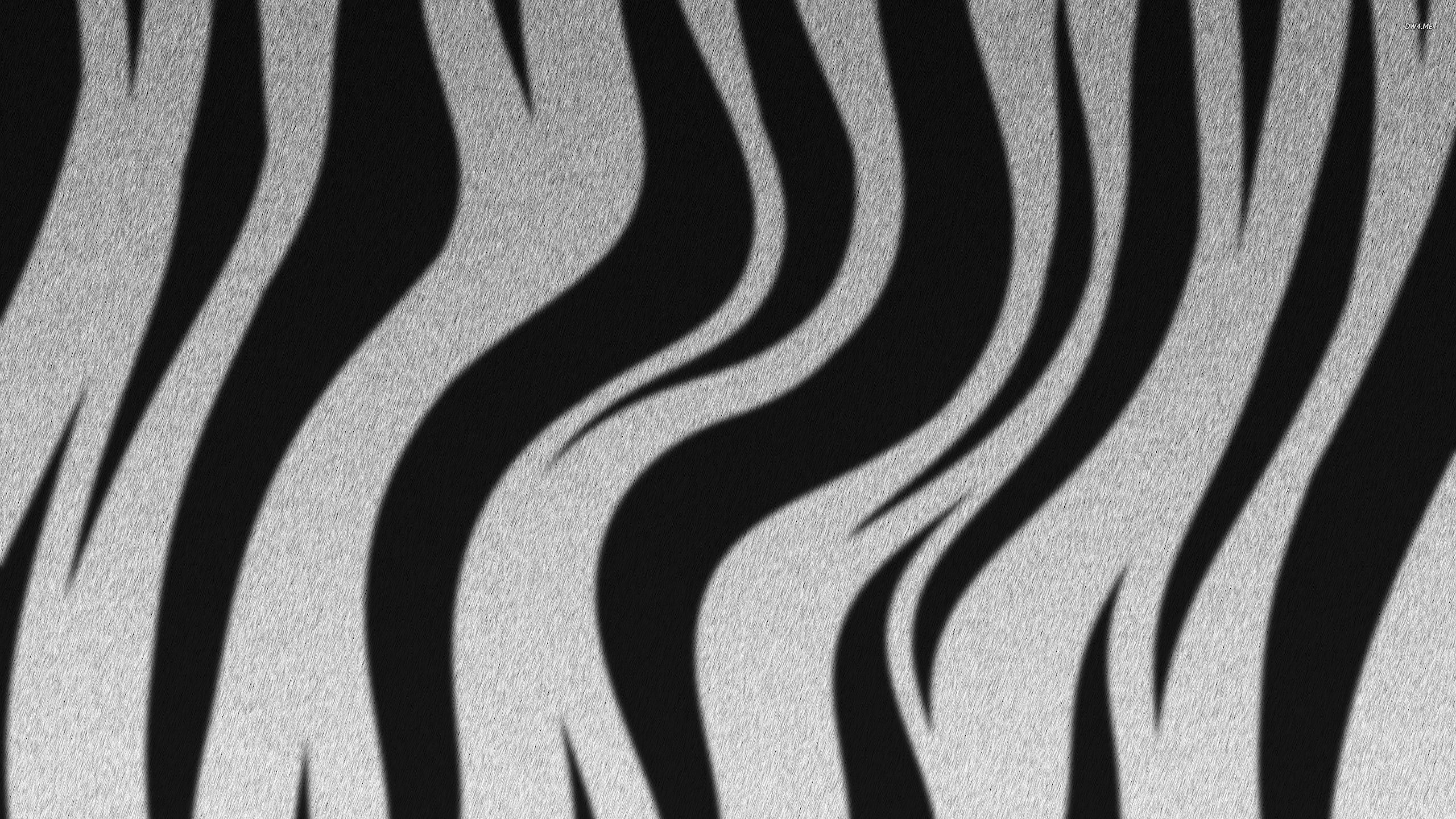 Zebra stripes wallpaper   Digital Art wallpapers   752 2560x1440