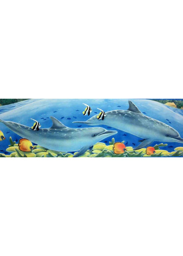 Childrens Rooms Under The Sea Dolphin Wallpaper Border 374x524