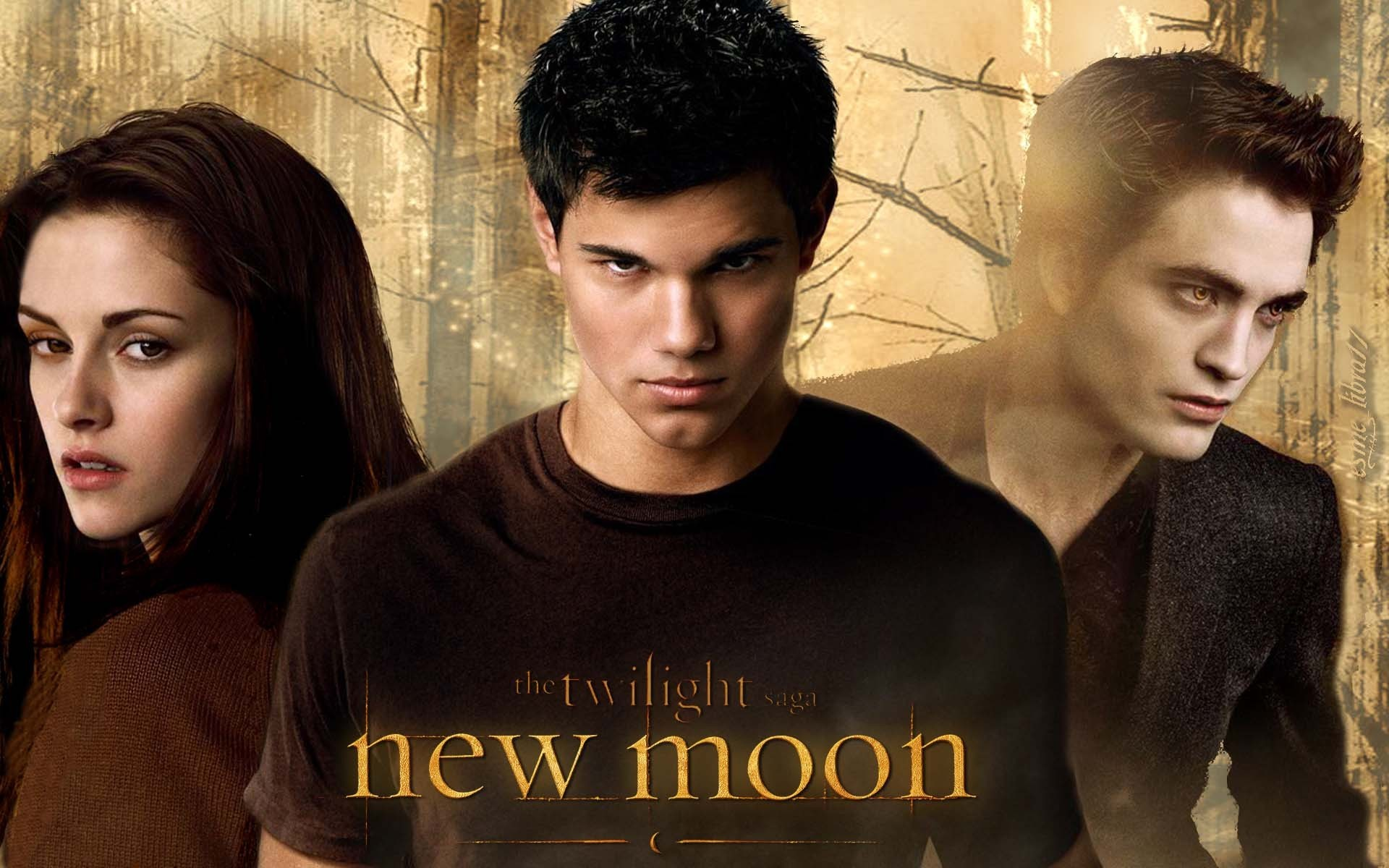 HD Jacob Twilight Backgrounds 1920x1200