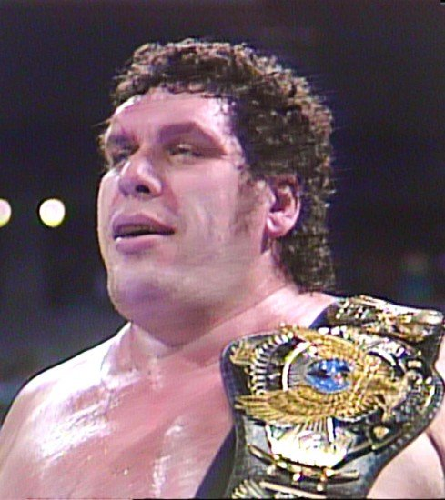 Andre The Giant   WWE Superstars WWE Wallpapers WWE PPVs 489x550
