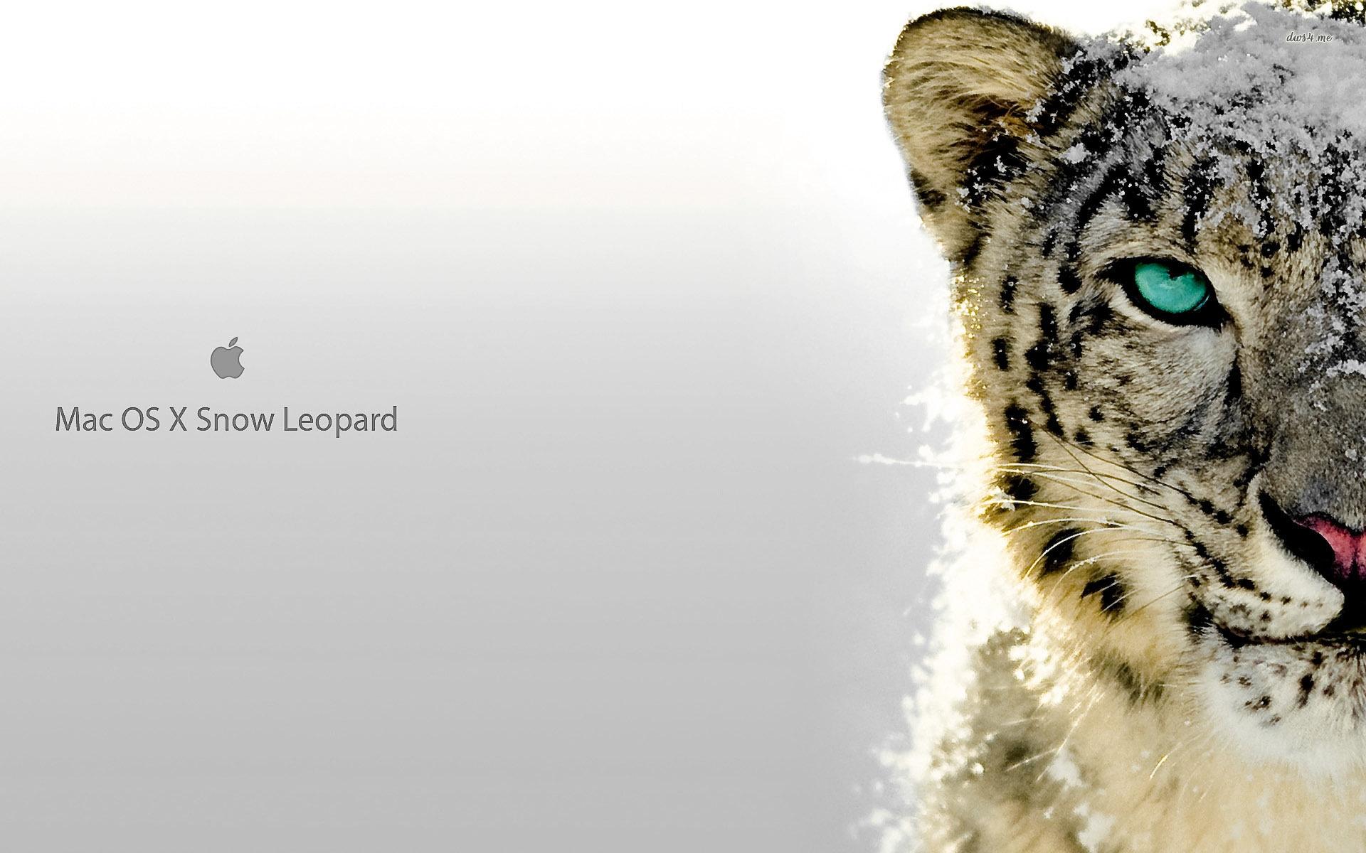 snow leopard mac os x hd desktop wallpaper background download