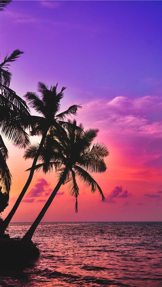 Best Vacation iPhone HD Wallpapers   iLikeWallpaper 640x1136