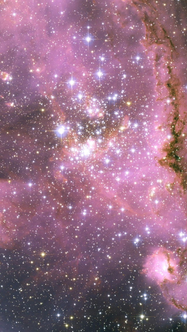 Download Wallpaper 640x1136 stars pink light galaxy iPhone 5S 5C 640x1136