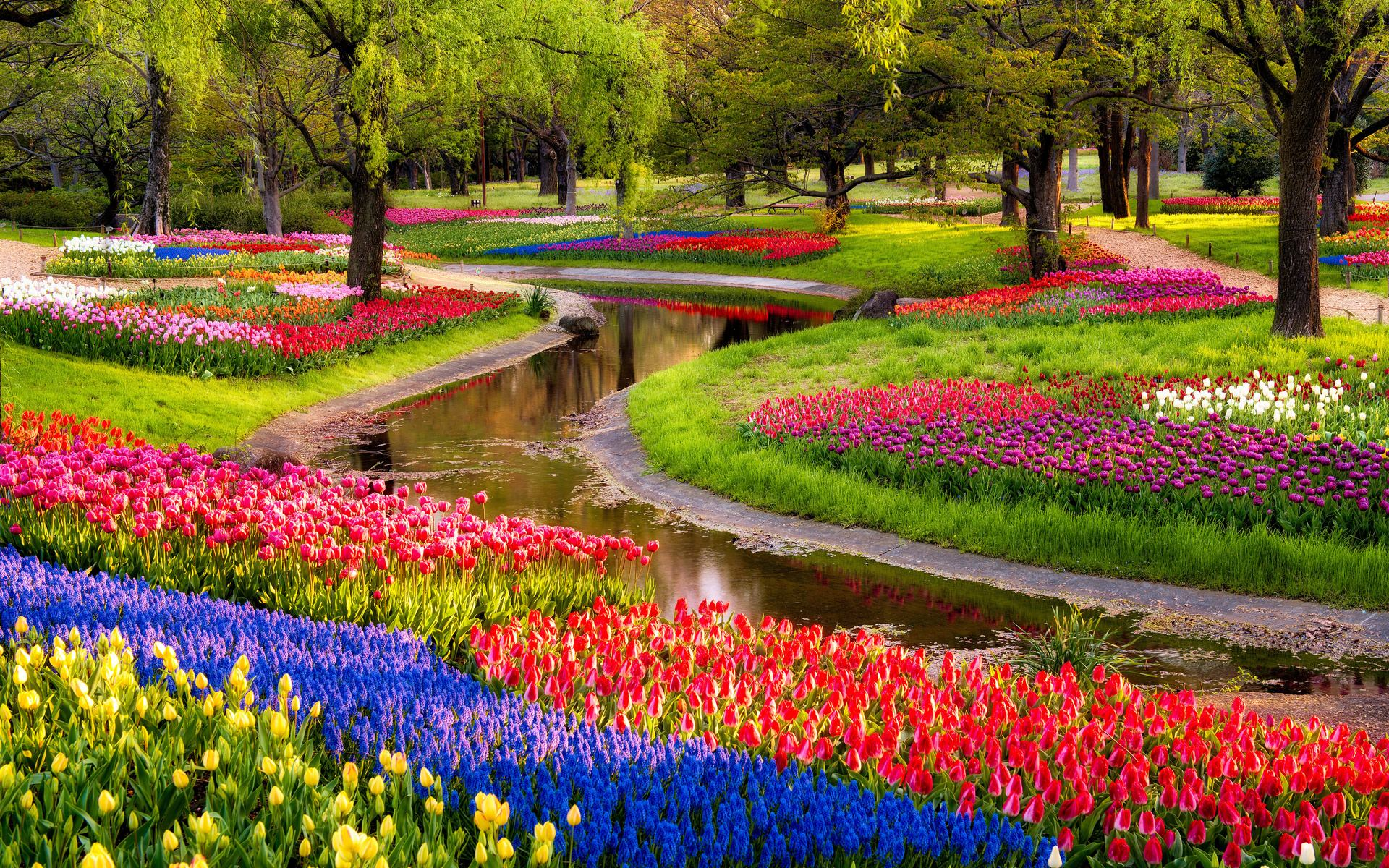45 Most Beautiful Garden Wallpapers   Download at WallpaperBro 1920x1200