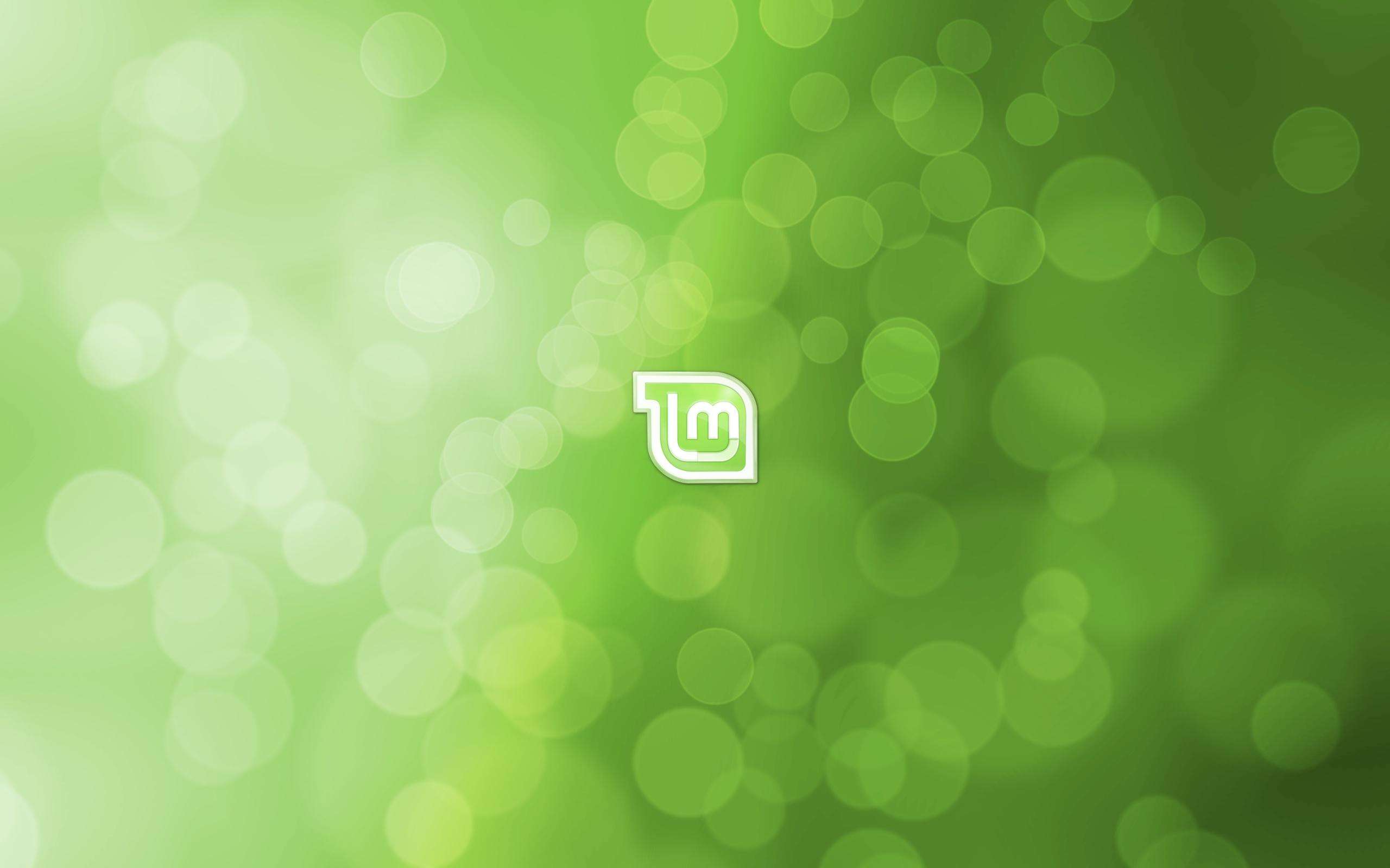 001 Beautiful Linux Mint Logo Image HD Wallpaper Picture And Desktop 2560x1600