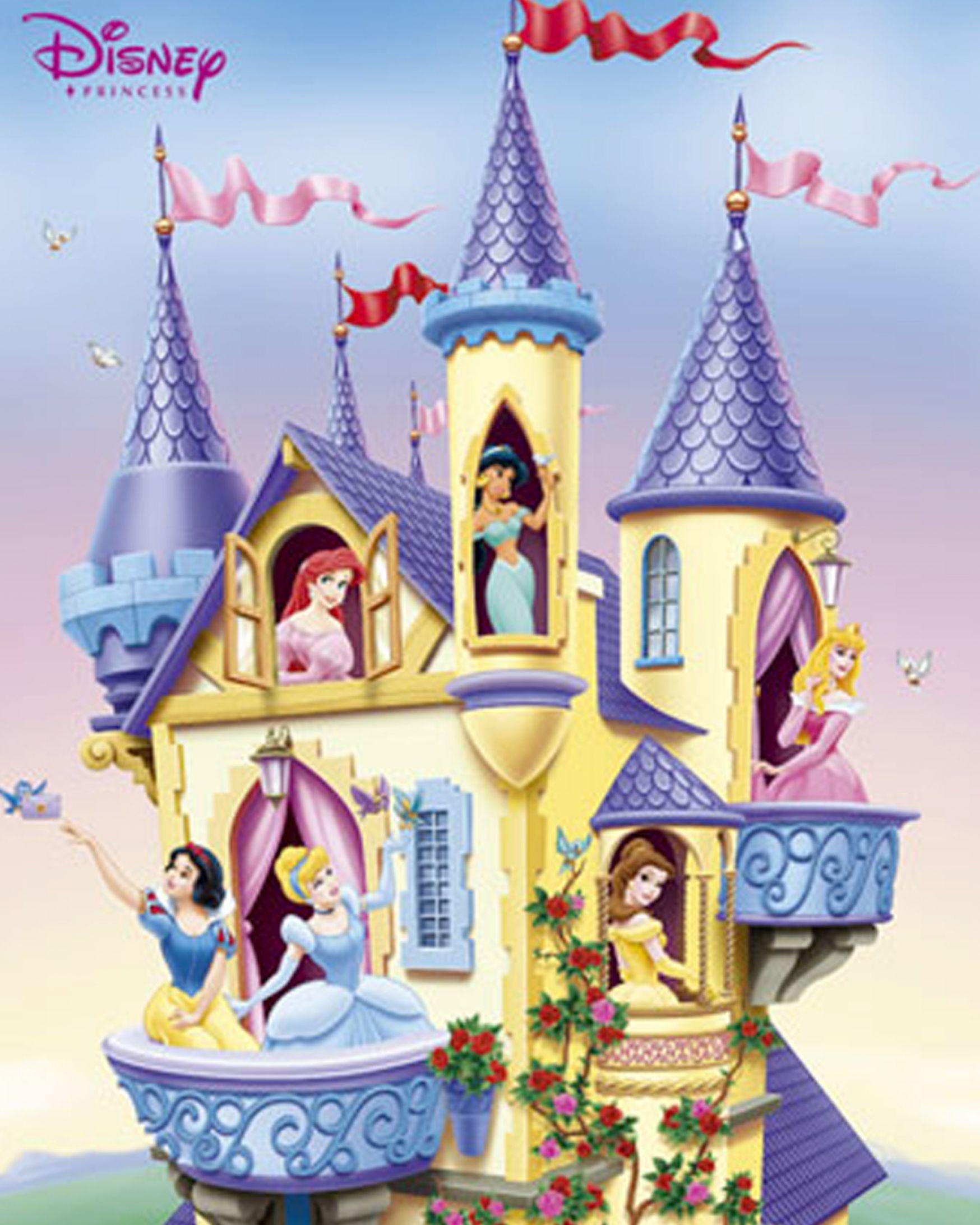 Disney princess castle wallpaper pictures 1 1748x2185