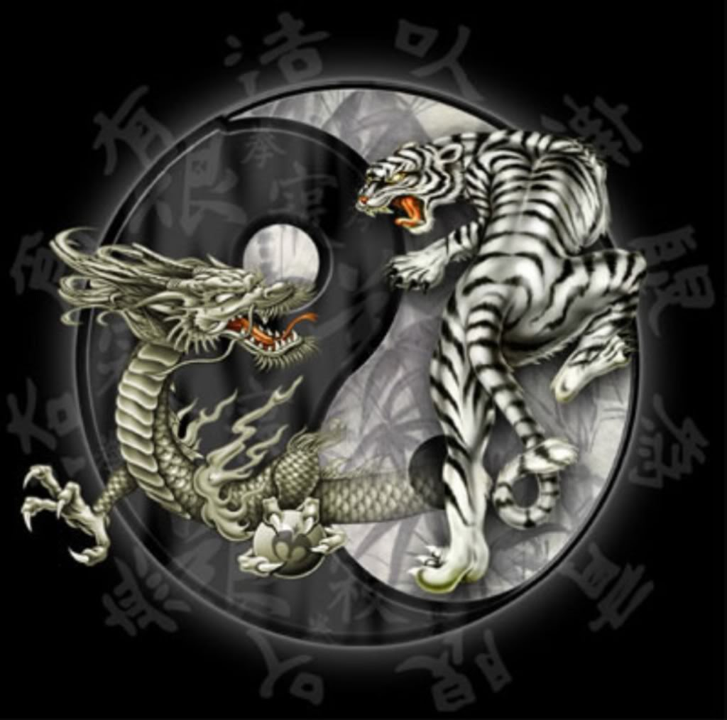 Dragon Vs Tiger Graphics Code Dragon Vs Tiger Comments Pictures 1024x1014