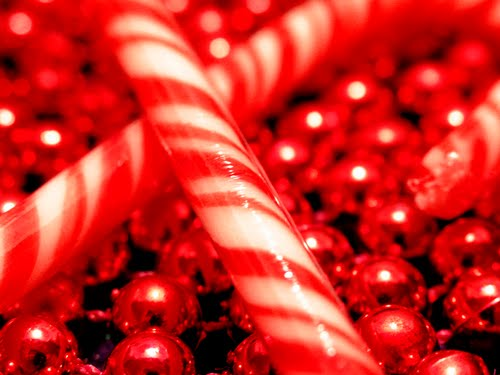 christmas candy cane wallpaper 500x375