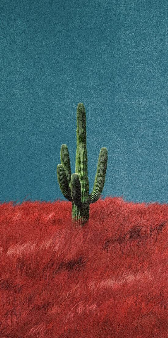Artist and world artist news Travis Scott Rodeo Wallpaper 550x1109