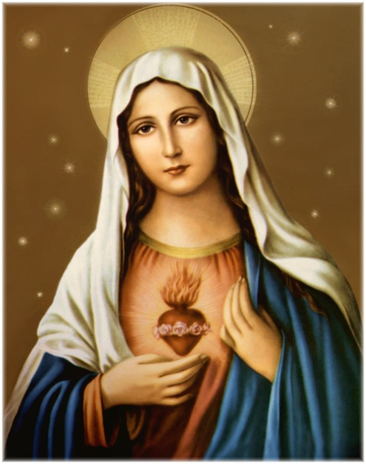 1000 images about Our Blessed Mother Virgin Mary on 736x933
