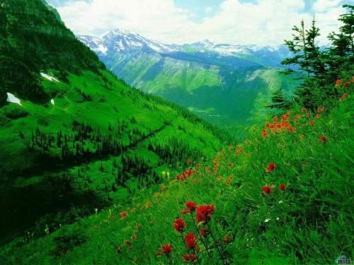 Mountain Valley Screensaver Screensavers   Download Mountain 500x375