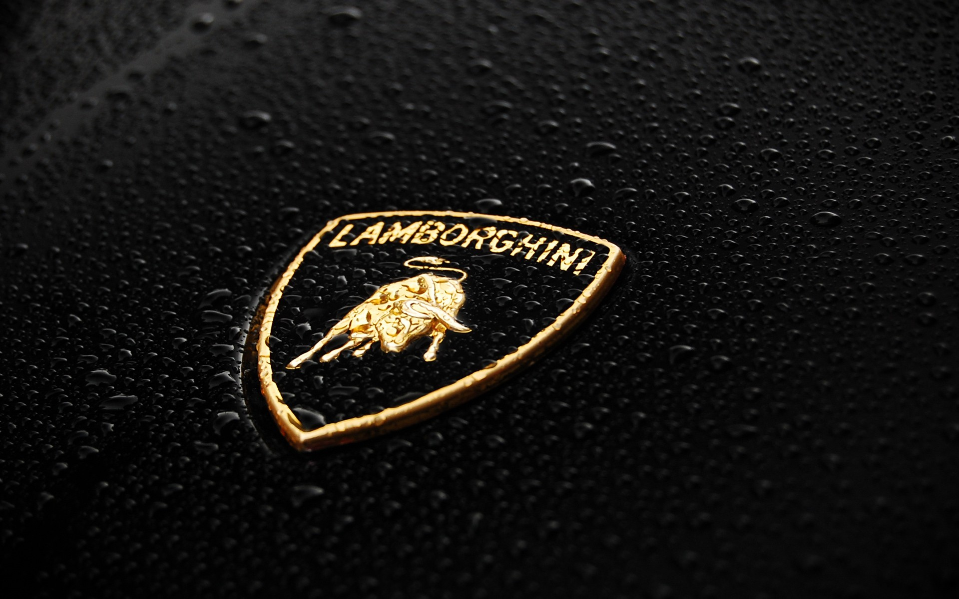 Lamborghini Logo Wallpapers Pictures Images 1920x1200