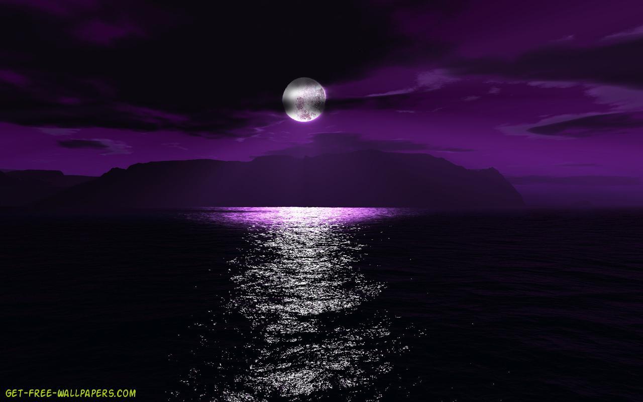purple spidey computer wallpapers - photo #21