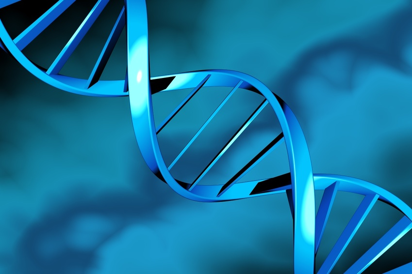 DNA double helix on a blue background 849x566