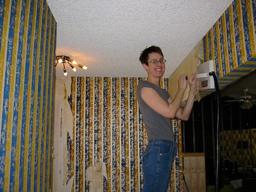 paint her hallway Shes keeping some flocked wallpaper yay 500x375