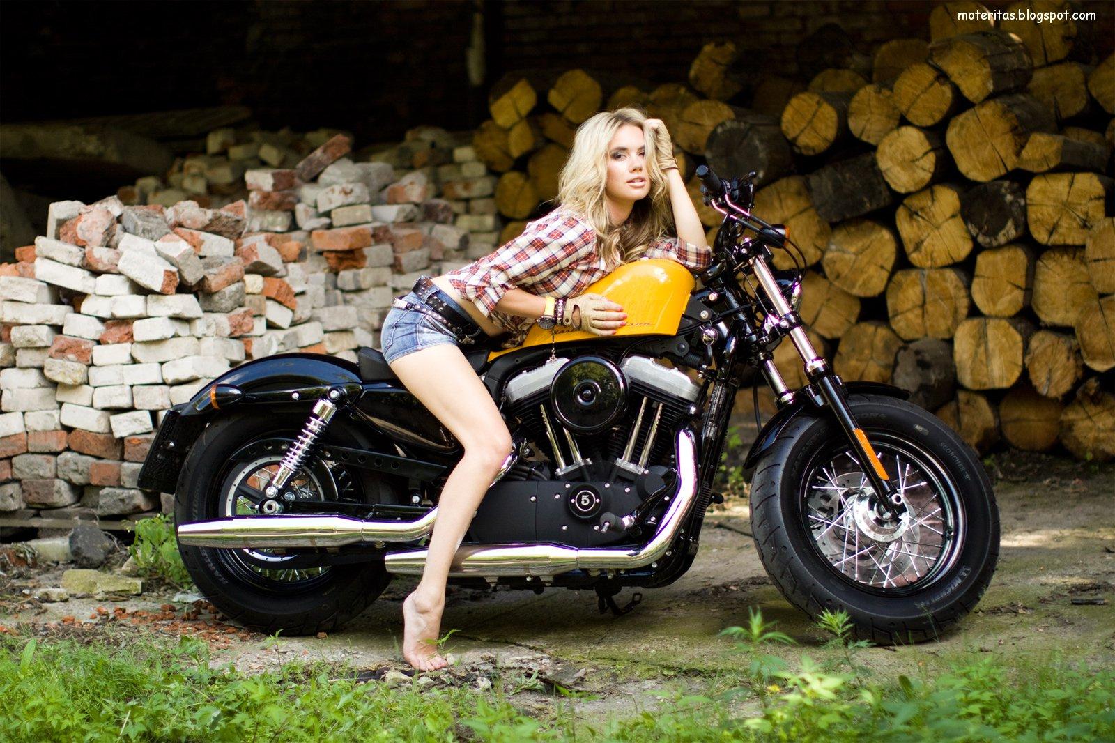 Harley Davidson Sportster Enduro   Custom Harley Modification   Custom 1600x1066