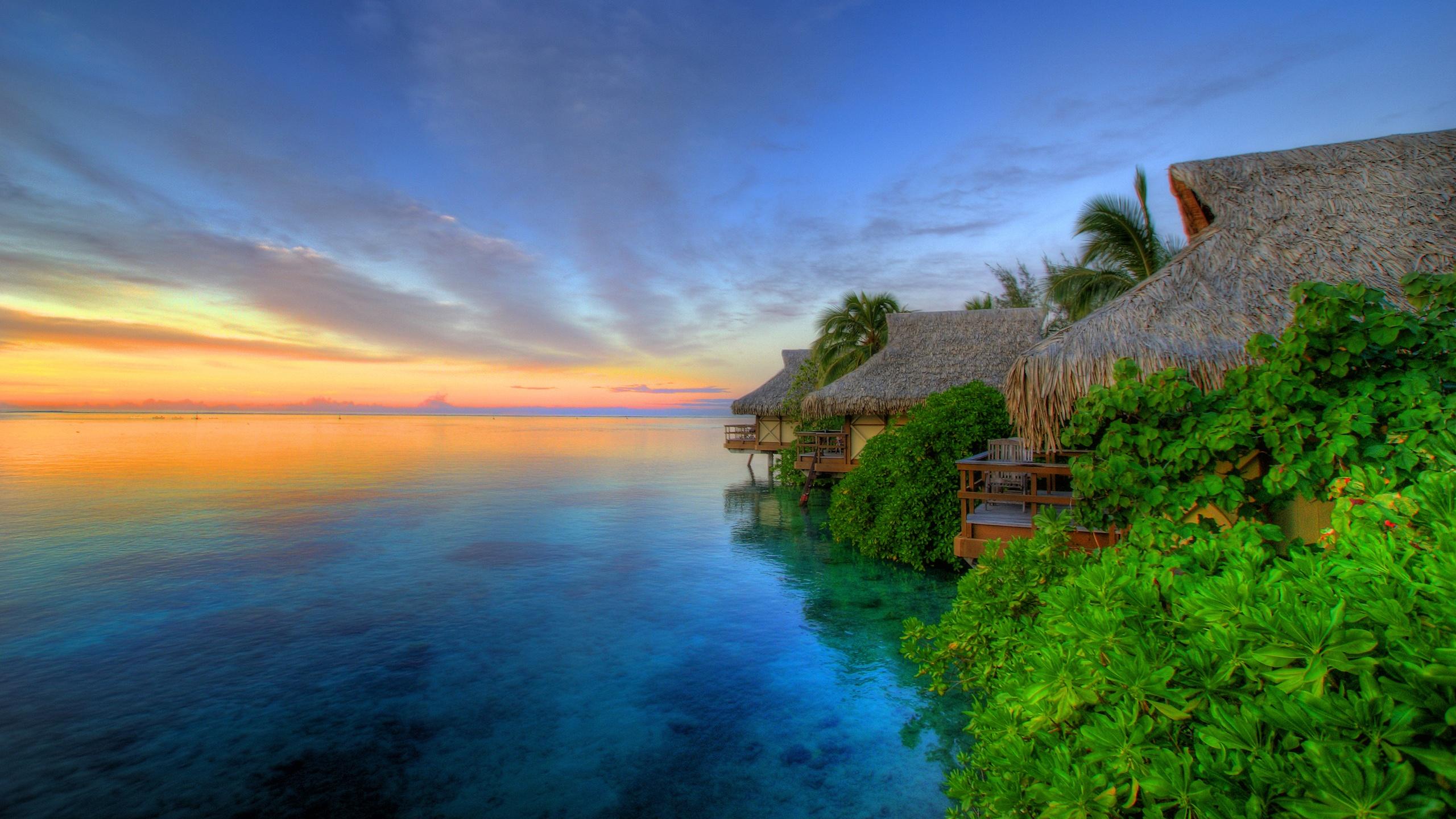 Download Island Sunset HD Widescreen Nature Landscape Wallpaper 2560x1440