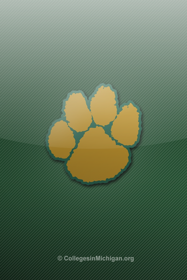 michigan state wallpaper for iphone   wwwhigh definition wallpaper 640x960