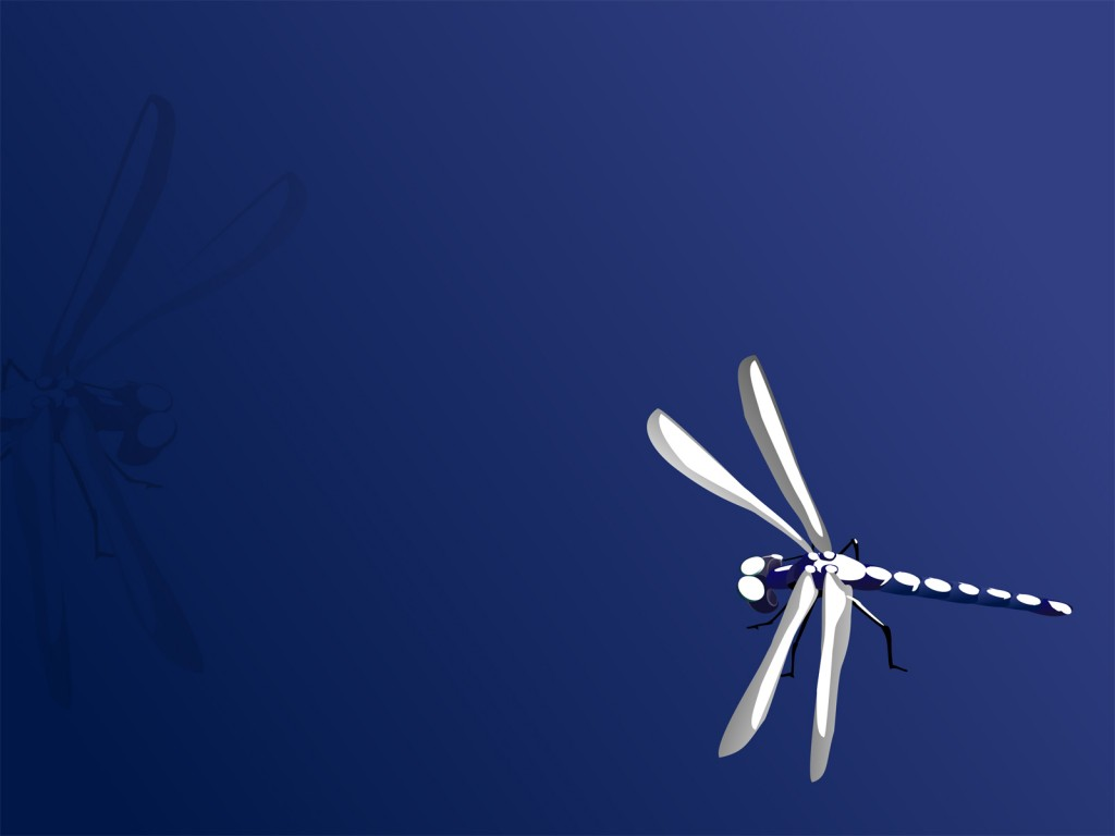 Blue Dragonfly Backgrounds   Animals Blue   PPT Backgrounds 1024x768